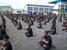Program Pengembangan Tahta Mataram